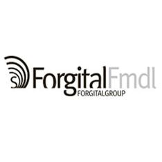 logo_Forgital-fmdl_234x234